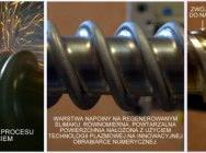 Regeneracja ślimaków…