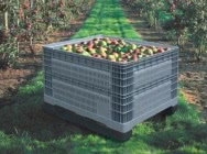 Plastic pallets for fruits…