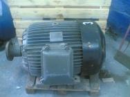 Silnik elektryczny 75kW 380/660V 495obr Se 355M12