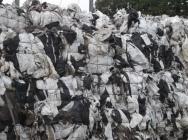 Folia LDPE rolnicza biało/czarna, dostępne 600 ton/miesiąc