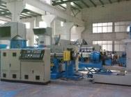 Nowa linia do regranulacji LDPE, LLDPE, HDPE i PP typ PE-300-100