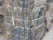 PVC twarda folia