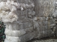 Folia bezbarwna LDPE