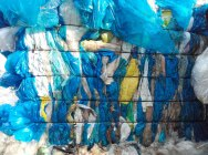 Folia kolor LDPE z produkcji / nie komunalka