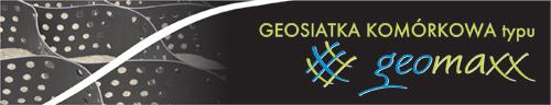 Geosiatka komórkowa