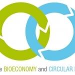 MEPs pave the way for bioplastics in vote on waste legislation