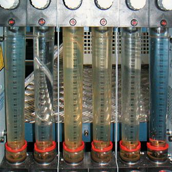 Rozwój mikroorganizmów
