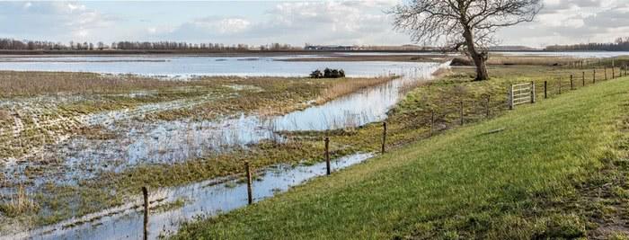 Tarasy zalewowe