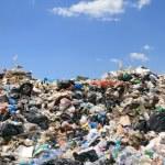 Polacy i Rumuni wytwarzają najmniej śmieci w UE