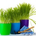 Ampacet prezentuje ekologiczne rozwiązania w dziedzinie masterbatchy