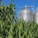Future technologies for food and biomass production