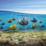 PolyTalk 2018: Wspólna walka z zaśmieceniem oceanów