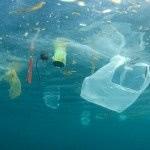 Odpady z tworzyw są już w Rowie Mariańskim