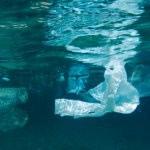 Na szczycie G7 podpisano Ocean Plastics Charter