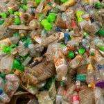 Problemy w recyklingu biotworzyw
