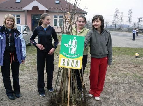 Drzewko za butelkę 2008