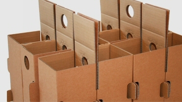 Bo Box