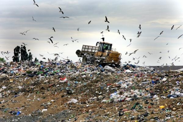 Recykling odpadów tworzyw sztucznych rozwiązaniem ekonomicznym i ekologicznym