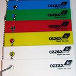 Firma Cezex walczy o przetrwanie