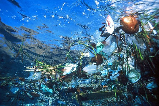 Ocean: odpady z tworzyw
