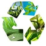 Tendencje w recyklingu tworzyw sztucznych
