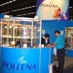 Pollena czerpie z inwestycji