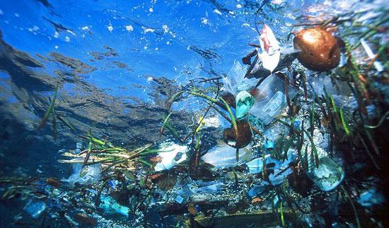 Oceany Wolne od Zanieczyszczeń, czyli duży projekt EuPC
