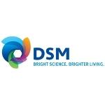 Nowy wizerunek marki DSM