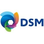 DSM inaugurates India's first composite material school