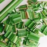 Bioplastics – the North American agenda