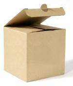opakowanie z kartonu
