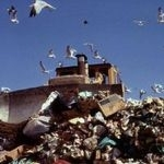 Packaging waste declining rapidly