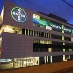 Poliwęglan w siedzibie koncernu Bayer