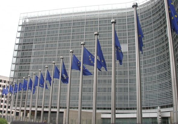 Konsultacje, Komisja Europejska