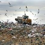 Odpady tworzyw sztucznych mają wielką wartość
