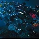 Tworzywa sztuczne problemem mórz i oceanów