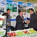 Misja gospodarcza do Uzbekistanu