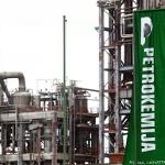 Azoty walczą o chorwacką spółkę chemiczną