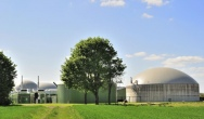 EU develops renewable bio-based economy