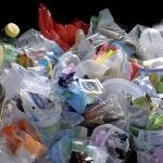 Polscy przetwórcy oceniają unijną rewolucję śmieciową