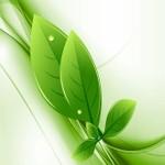 Raport środowiskowy polskiej chemii