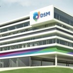 DSM opens international research center