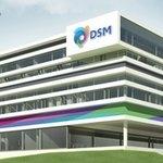 DSM opens international research center