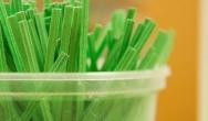 Polski rynek opakowań z tworzyw biodegradowalnych