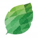 Rewolucyjne zmiany w poznańskich targach ekologicznych